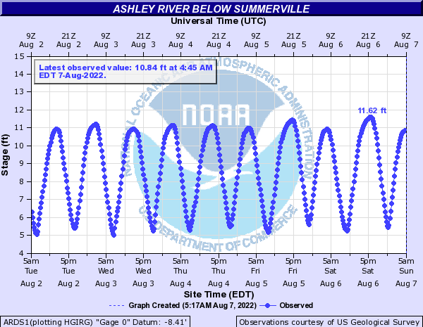 Ashley River below Summerville