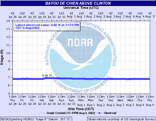Bayou De Chien above Clinton