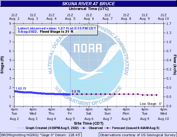 Skuna River at Bruce
