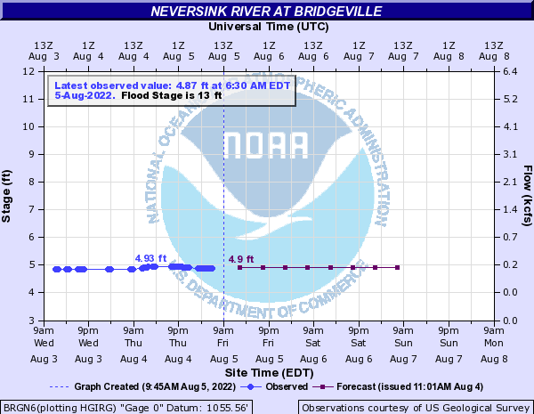 Neversink River at Bridgeville