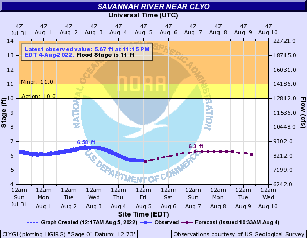 Savannah River near Clyo