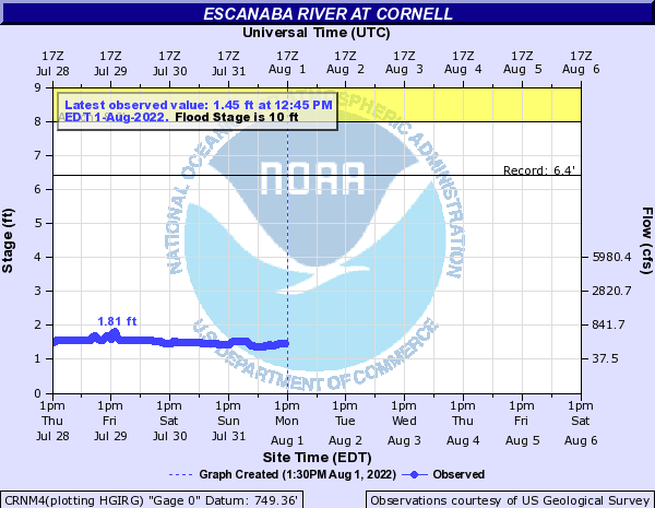 Escanaba River at Cornell
