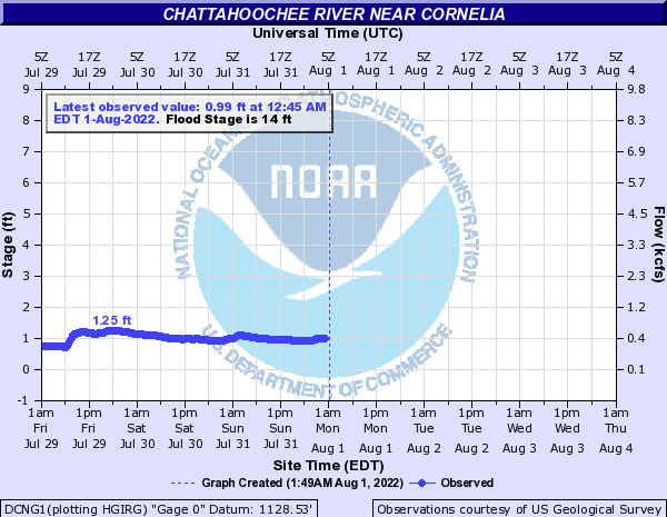 Chattahoochee River near Cornelia