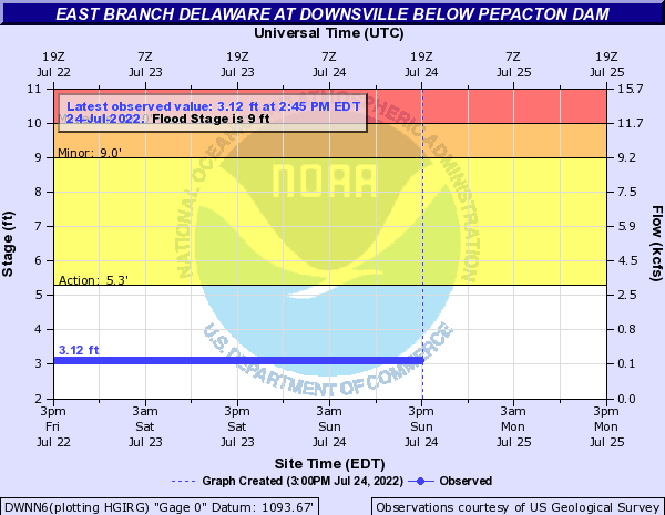 East Branch Delaware River at Downsville below Pepacton Dam
