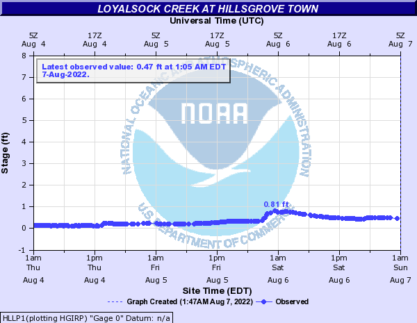 Loyalsock Creek at Hillsgrove Town
