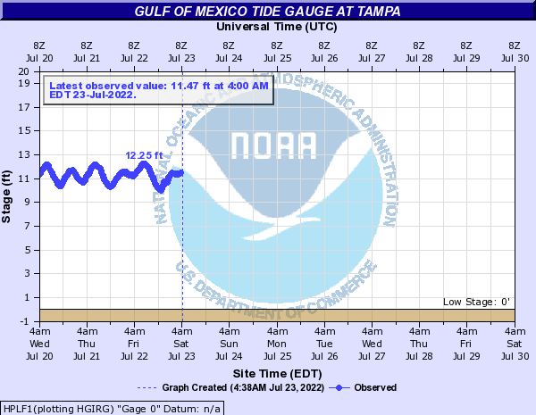 Gulf of Mexico Tide Gauge at Tampa