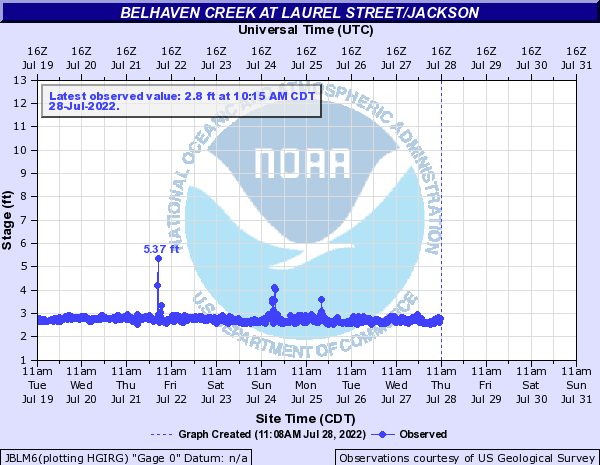 Belhaven Creek at Laurel Street/Jackson