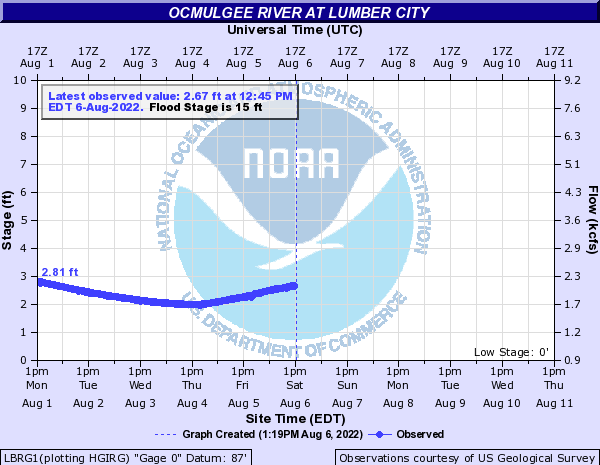 Ocmulgee River at Lumber City