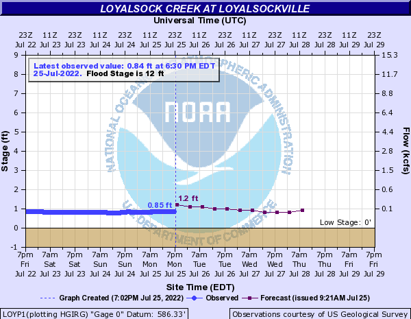 Loyalsock Creek at Loyalsockville