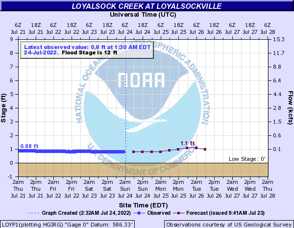 Loyalsock Creek at Loyalsockvile