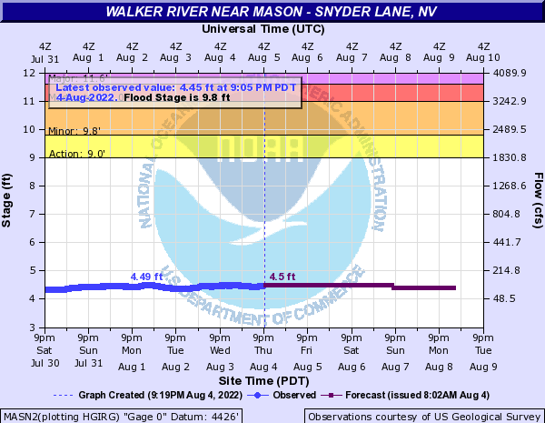 Walker River near Mason - Snyder Lane
