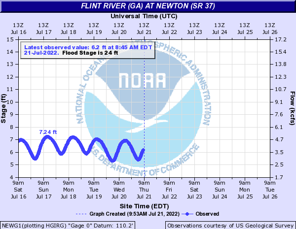Flint River (GA) at Newton (SR 37)
