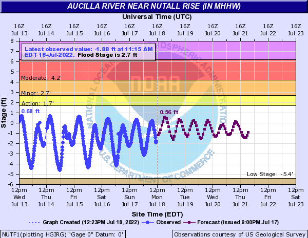 Aucilla River near Nutall Rise (in MHHW)