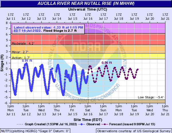 Aucilla River near Mouth near Nutall Rise