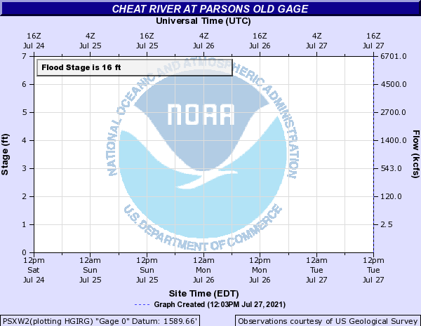 Cheat River at Parsons New Gage at Holly Meadows Bridge