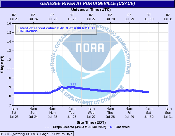 Genesee River at Portageville (USACE)