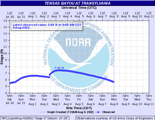 Tensas Bayou at Transylvania