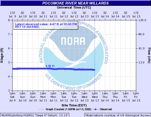 Pocomoke River near Willards
